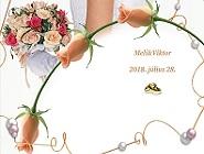 Meli és Viktor esküvője Dabason